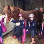 PONY STARS-STABLE MANAGEMENT COURSES